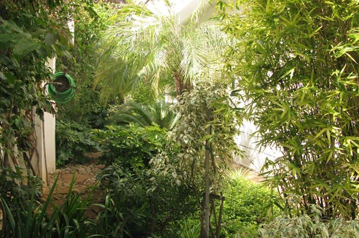 Green Oasis 3 - Casablanca - Hus