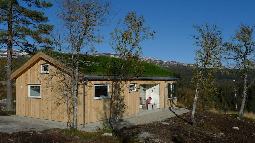 Norefjell modern cabin with panoramic view