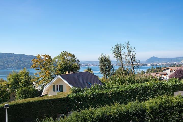 Vue lac d'annecy et montagnes