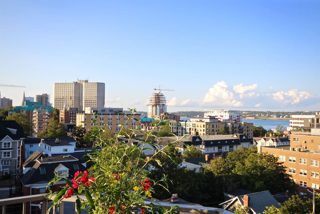 Enjoy the sunshine and an expansive city/harbour view from your Skyline balcony!