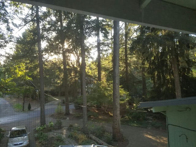 River Forest Apartment offers Quiet & Tranquility - Portland - Apartment