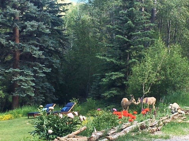 Stay Awhile:private studio near Vail&Beaver Creek