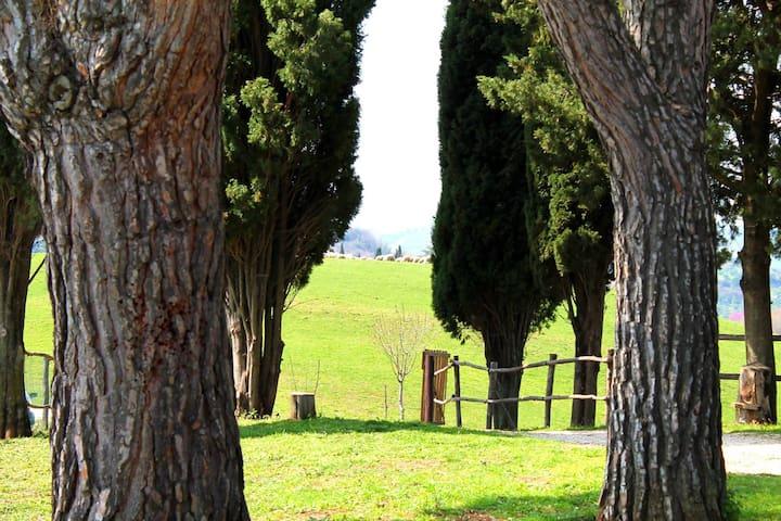 La Campagnola - Castelnuovo di Farfa
