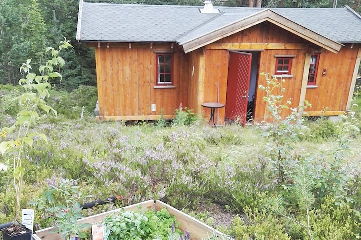 hytte/cosy cabin 45 sqm