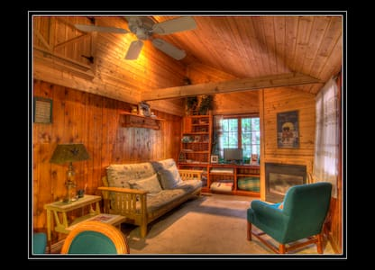 ComfyLog Cabin, In the Woods and On the Lake, LOOK - 特拉弗斯城(Traverse City)