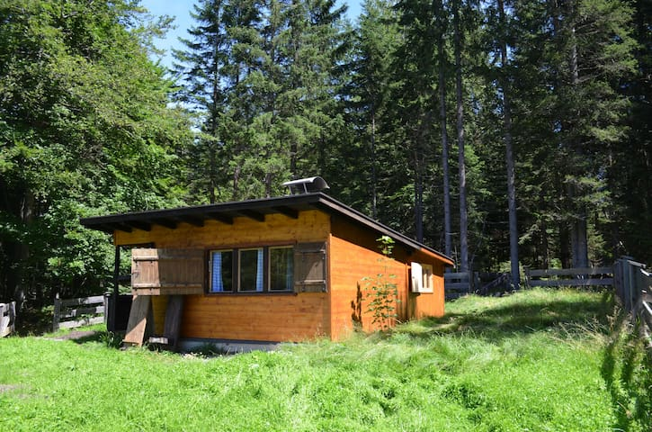 Cozy alpine Cabin in the woods - Telfs - Chalé