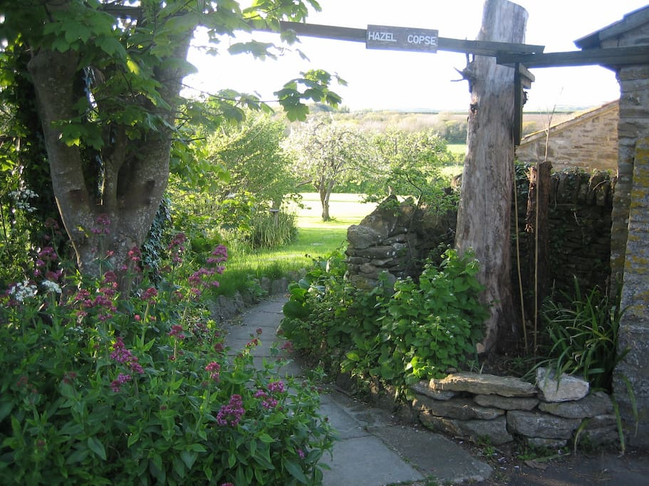 Entrance to Hazel Copse Cottage