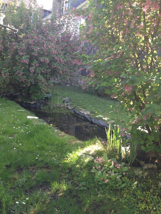Le jardin secret de louise jardin en centre ville for Jardin google translate