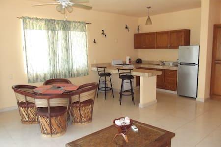 1 bedroom apartment - San Jose Del Cabo  - Apartament