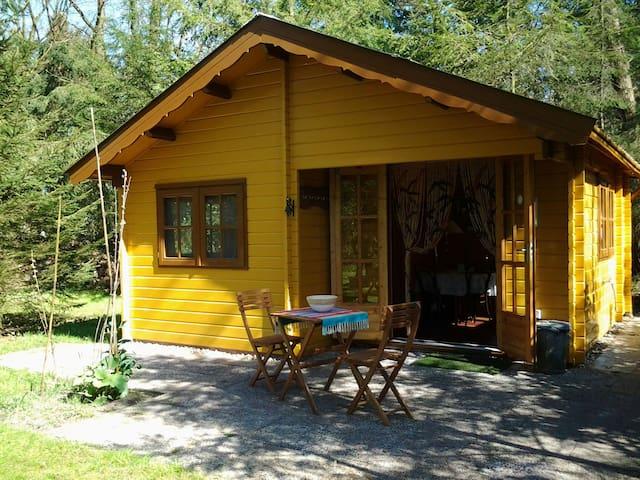 Blokhut/vakantiehuis in het bos. - Heerde - Talo