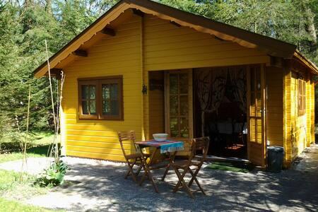 Blokhut/vakantiehuis in het bos. - Heerde - Casa