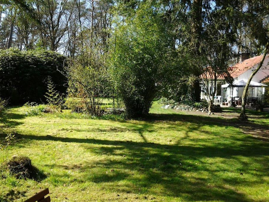 Blokhut vakantiehuis in het bos huizen te huur in for Klein huisje in bos te koop