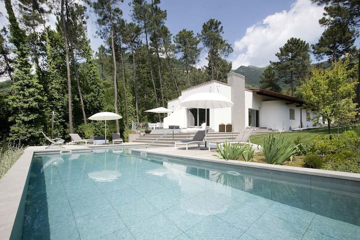 Beautiful Villa Silerchie Versilia