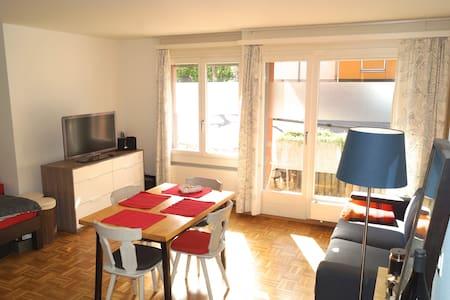 Beautiful studio near Irchelpark - Curych