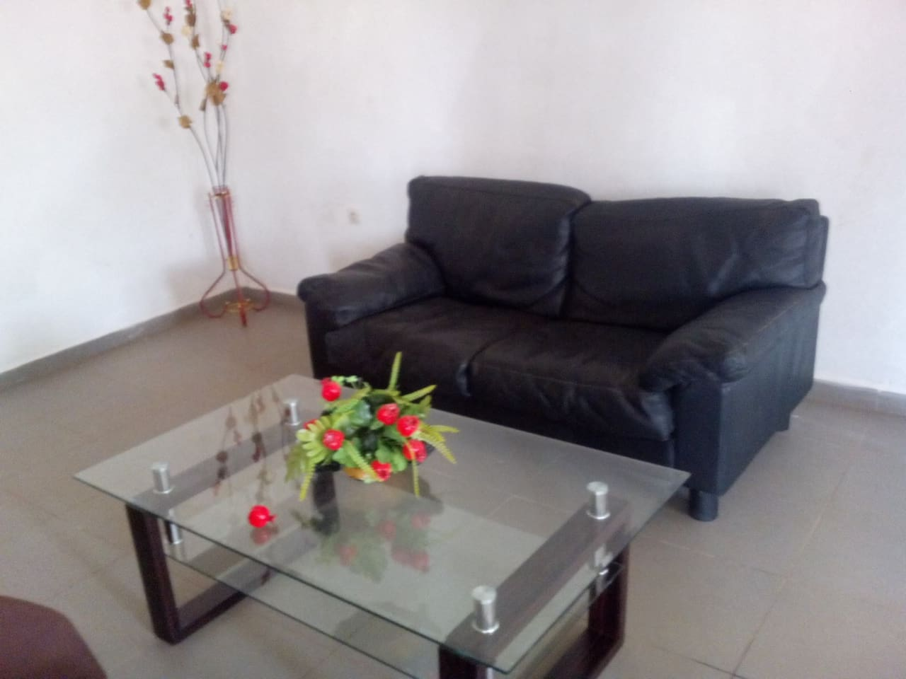 Appartementmeubl 2 Chambres Jardin Apartments For Rent In  # Meuble Tv Yaounde