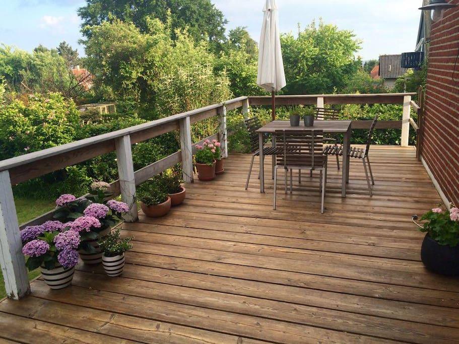 Terrasse fra stue (sydøst)