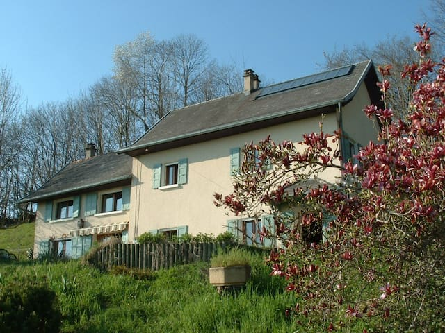 maison savoie  lac d'aiguebelette - Avressieux - Dům