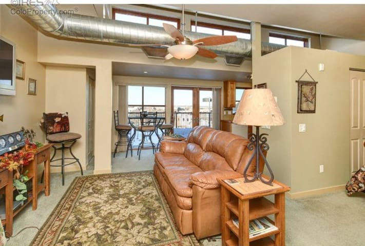 Top Floor Loft in Old Town - Fort Collins - Loteng