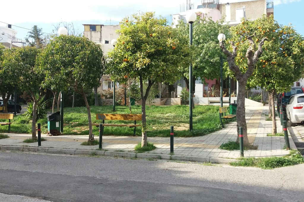 The park in front of the house