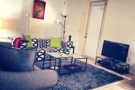 Cozy apartment near downtown Tampa! - Tampa