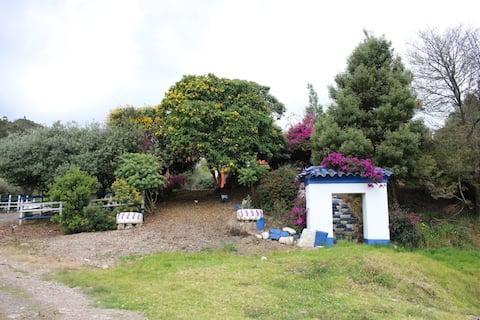 Finca Villa Carola