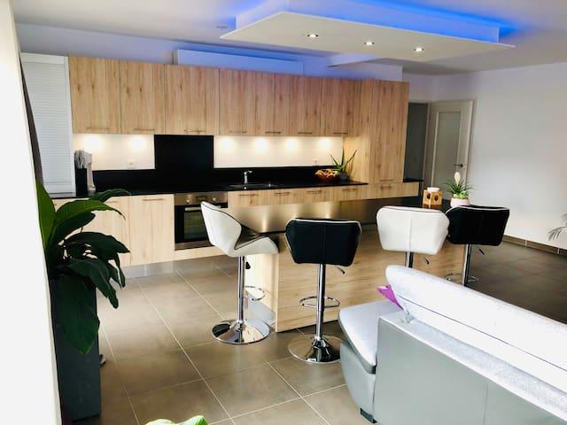 Bel appartement lumineux T3 aux portes de Genève