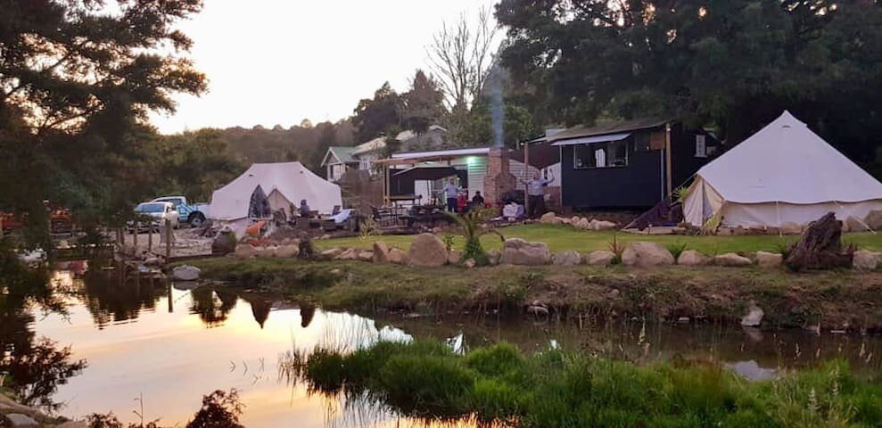 Kauri Creek Glamping