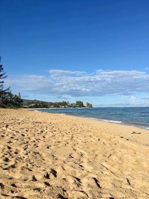 Waialua Beach Days. Just across the street to a quiet beach.