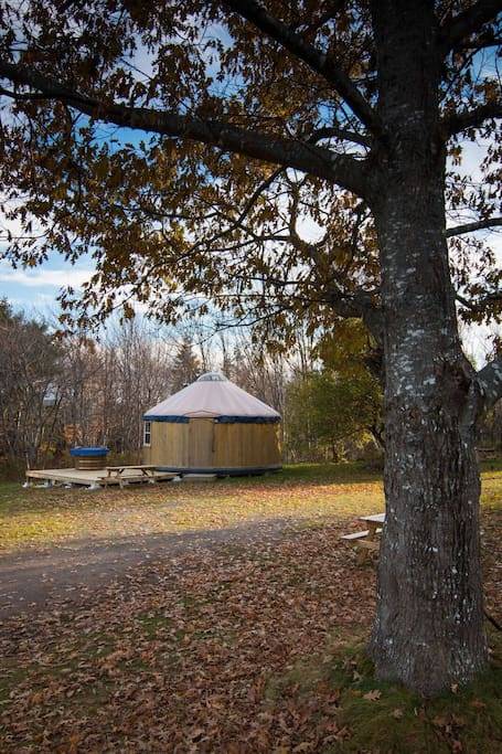 It is located on a lawn close to the main lodge and garden with chicken coop.
