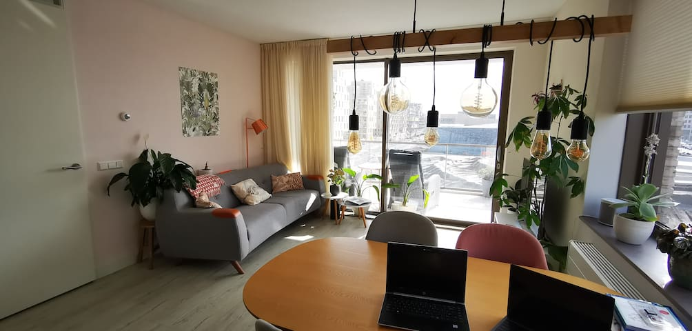 Light, modern apartment,  10 min to AMS Central