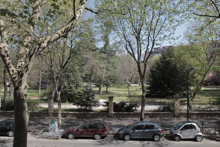 Vue sur le Parc (aucun vis à vis d'aucune pièce)
