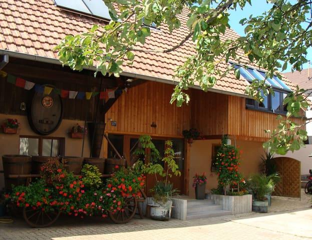 Gîte le nid d'hirondelle  2 à 4 pers - Wihr-au-Val - Daire