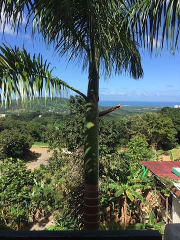 Million Dollar View to Live For - Luquillo - Huis
