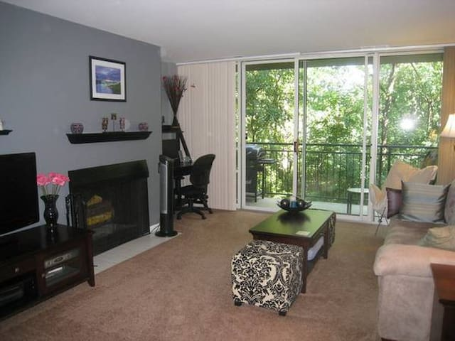 1 Bedroom Condo - Private & Quiet - Lisle - Huoneisto