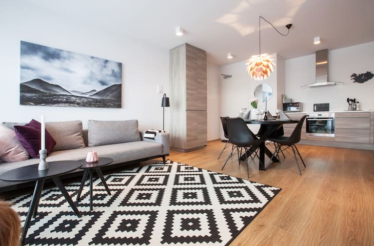 A new luxury apartment downtown.