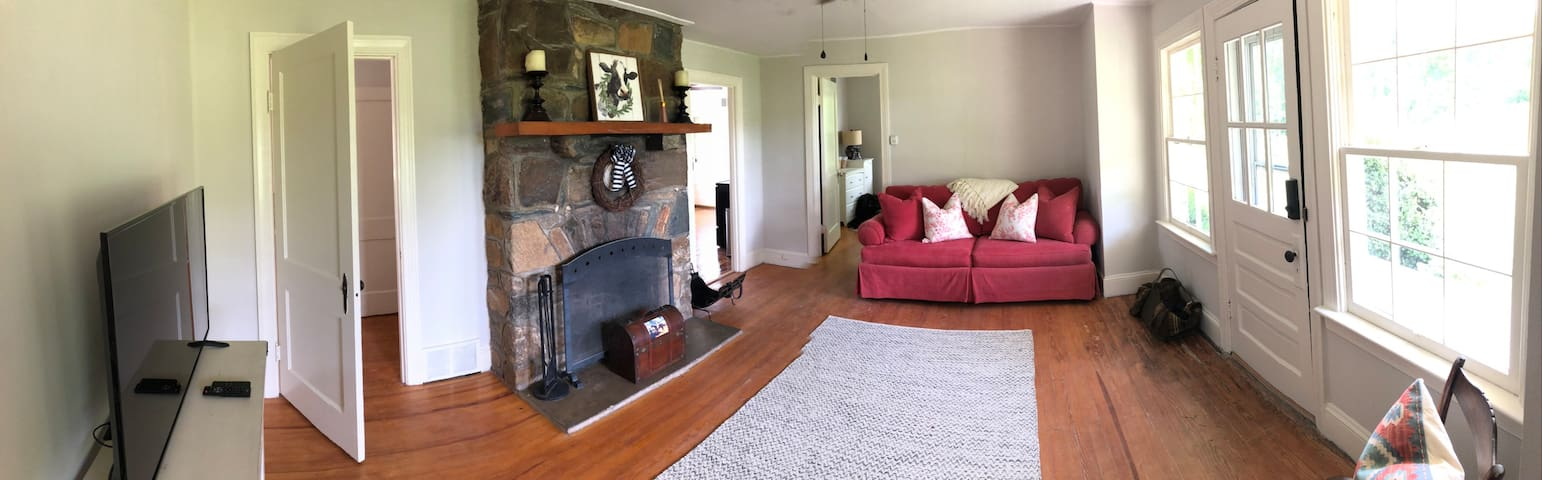 Living room with stone fireplace and pull out queen sofa.