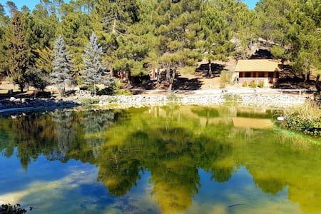 La cabaña del lago. Parque Natural del Río Mundo