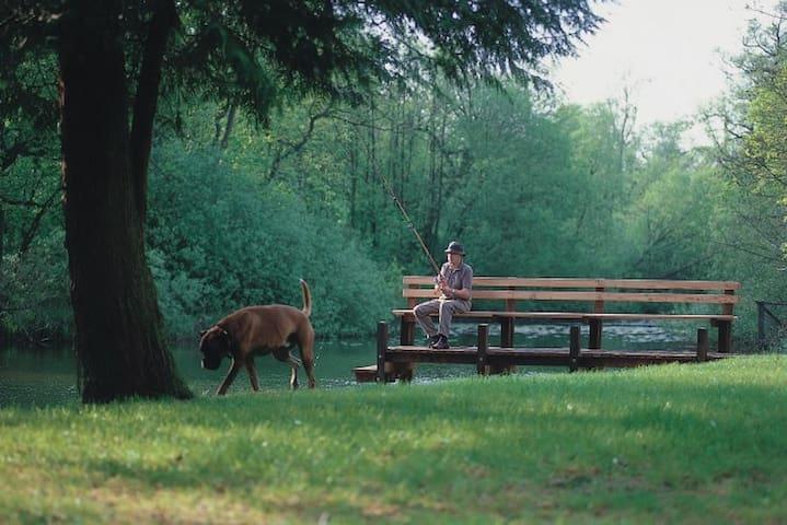 Bådebroen i parken