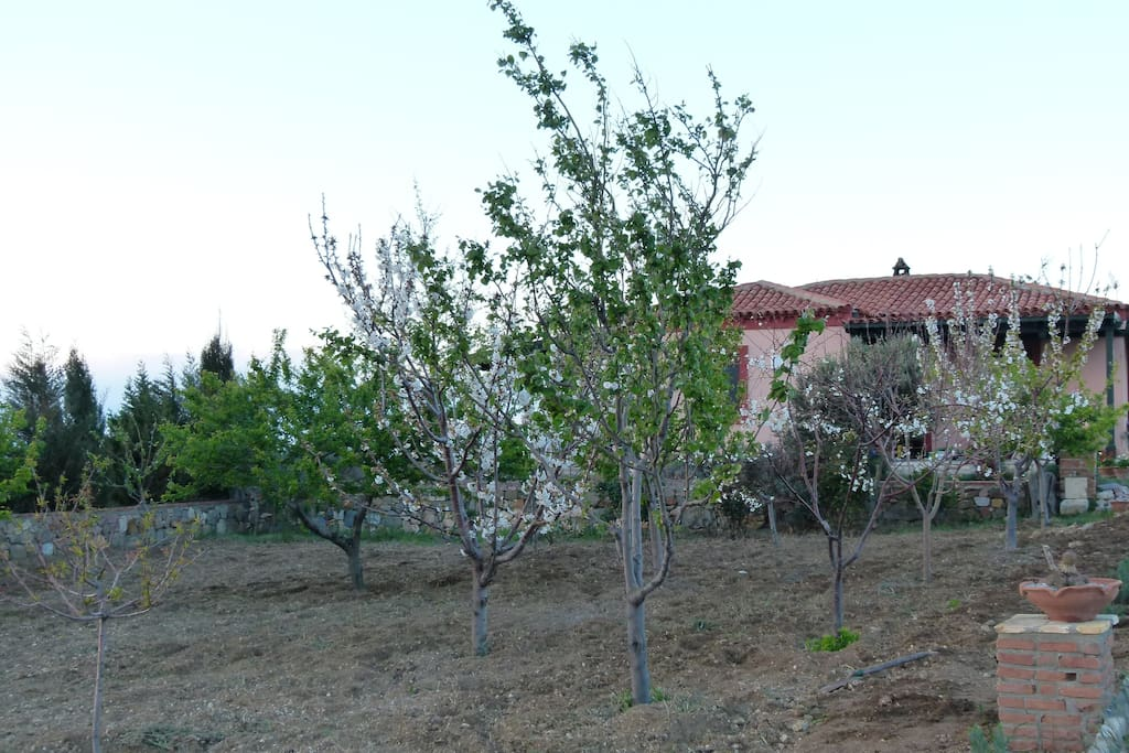 The sunset Vineyard House - Gün Batımı Bağevi