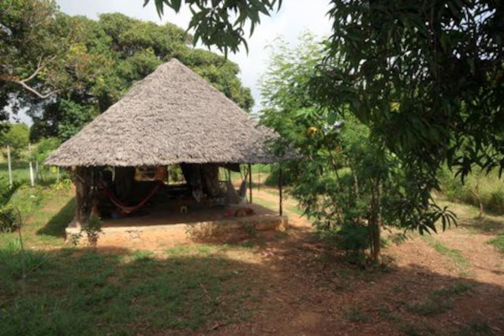 """Mwembeni means """"the place of the mango trees"""" and you can see why!"""
