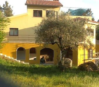 Quinta Recochina Beira Portugal - Tábua - Casa
