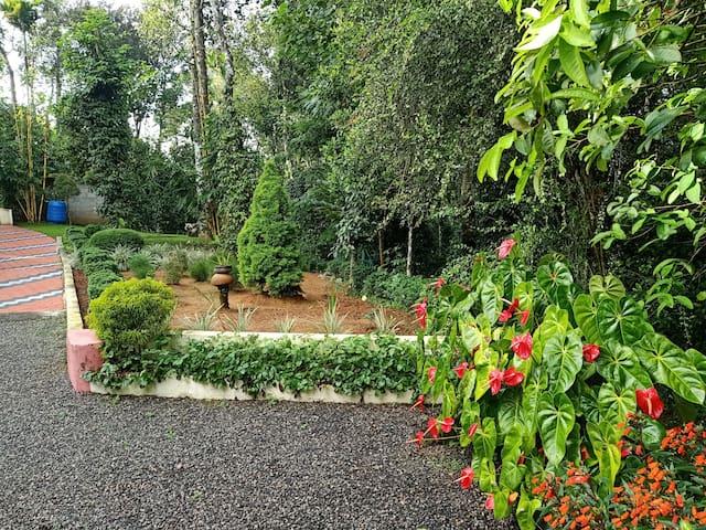 A spice farm Stay at Thekkady, Kumily