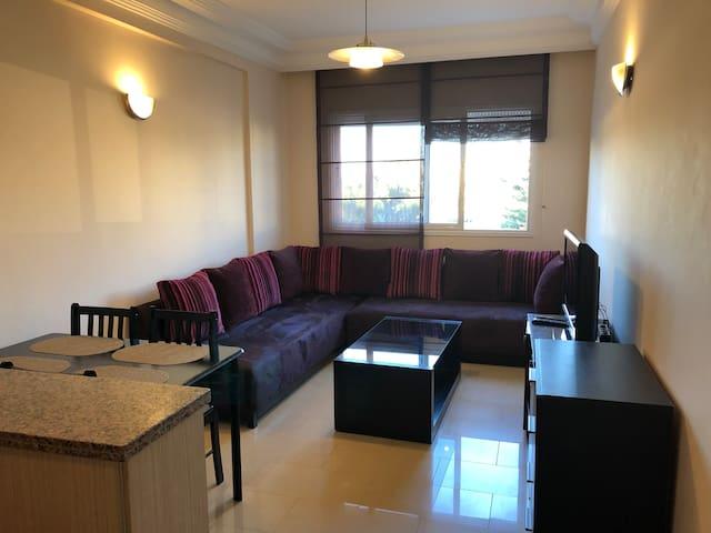 Joli Apart 1 salon + 1 ch. Quartier Princesses (3)