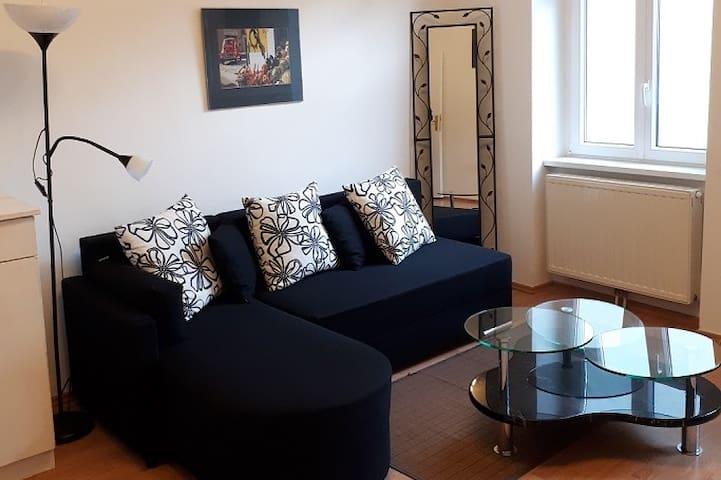 Cozy Central Apartment In Vienna