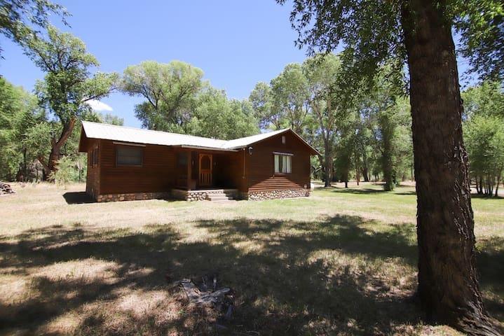 Cozy cabin on Conejos River