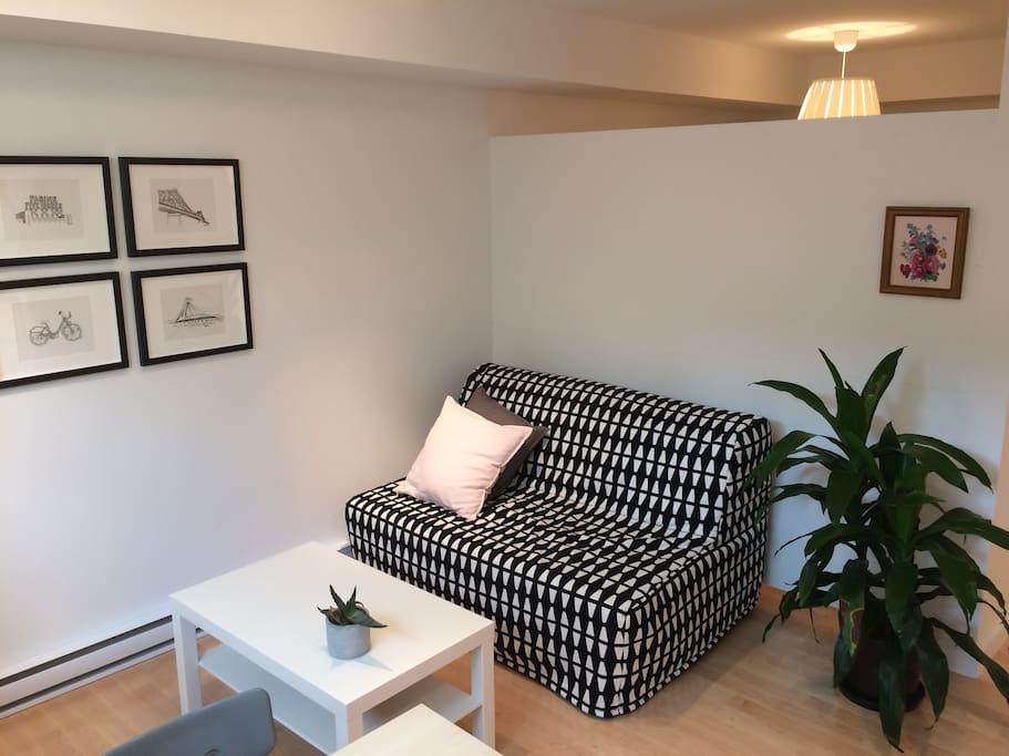 Salon avec sofa-lit