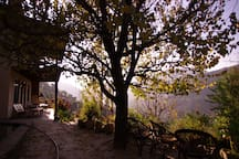 A beautiful sun set from under the apericote tree by spring fed plung pool