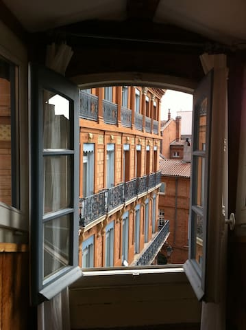 18thCentury Renovated Attic Studio  - Toulouse - Wohnung