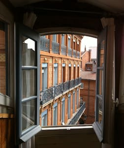 18thCentury Renovated Attic Studio  - Toulouse - Daire