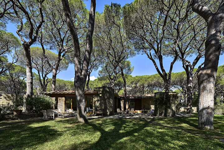 Villa Chris - Roccamare pine forest